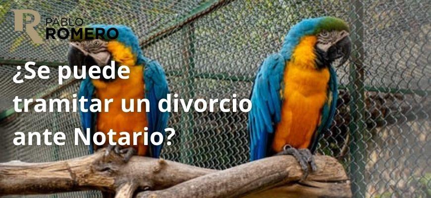 Divorcio mutuo acuerdo Granada